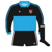 adidas-Wales-blue-goalkeeper-shirt-jersey-1980-Southall