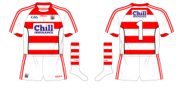 2016-Cork-GAA-goalkeeper-hooped-hurling-football-jersey